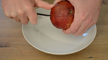 granadeur kitchen tool to easy deseed pomegranates